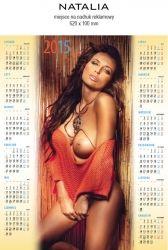 Kalendarz 2015 jednoplanszowy B1