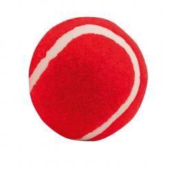 piłka dla psa
